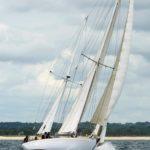 BP-14-Jaker-Gull-1.jpg